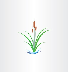 Green reed bulrushes design vector