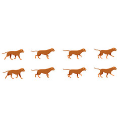 Red dog set icons with fast running animals vector