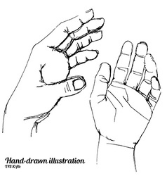 Human hands sketch vector image