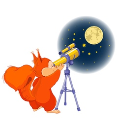 Squirrel astronomer vector image