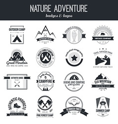 Camping icons vector image