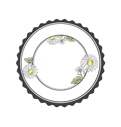 Daisy Flower Round Frame vector image