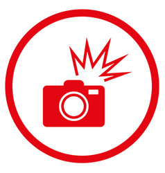 Camera flash rounded icon vector