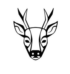 roe deer vector image vector image