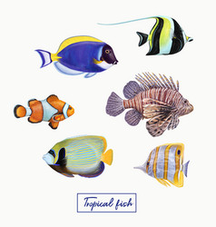 Bright colorful tropical fish vector