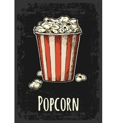 Carton bucket full popcorn with title vector