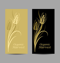 Set vertical banners wheat spikelet on yellow vector
