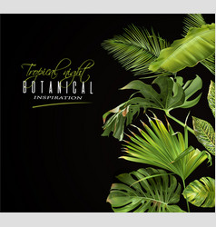 tropical night banner vector image