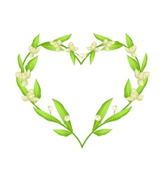 Ylang Ylang Flowers in A Heart Shape Frame vector image vector image