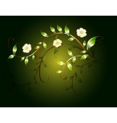 Wavy pattern of beautiful green flowers on a dark vector image vector image
