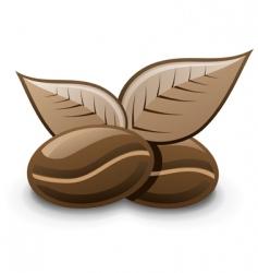 coffee bean vector image vector image
