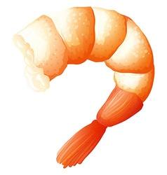 Shrimp tail on white vector