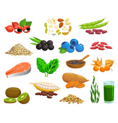 Superfoods products healthy food seeds and fruits vector