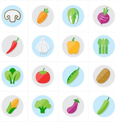 Flat Icons Vegetables Icons vector image vector image