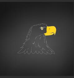 american bald eagle or hawk head mascot graphic vector image