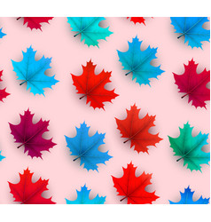 autumn background with beautiful maple leaves vector image