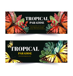 Banner design with butterfly and tropical plants vector