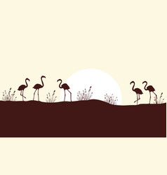 Beauty scene hill with flamingo silhouettes vector