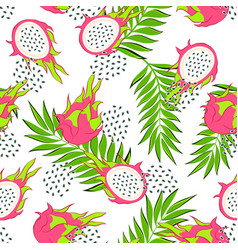 Dragon fruit pattern vector