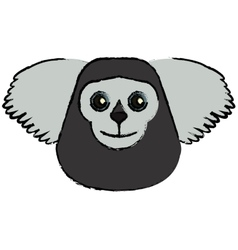 drawing saki animal brazil vector image