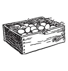 Eggs in wooden box vintage vector