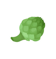 flat icon of fresh green artichoke natural vector image