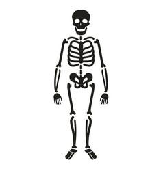 full length skeleton silhouette halloween symbol vector image