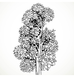 Graphically drawing black ink tree isolated on vector