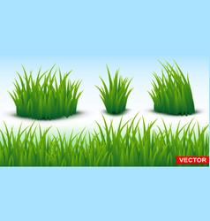 green grass horizontal texture seamless background vector image