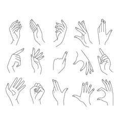 line woman hands gestures vector image