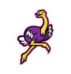 Ostrich running mascot vector
