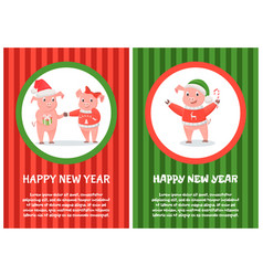 postcard happy new year pink pigs 2019 vector image
