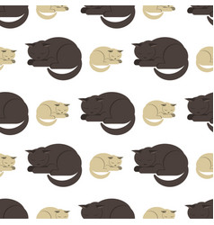 seamless pattern of sleeping gray cats on a white vector image