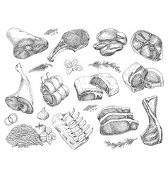Set of different meats in sketch style vector