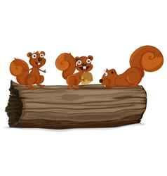 Squirrels on a log vector