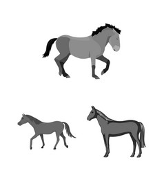 Trot and running symbol vector