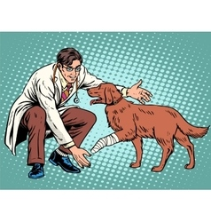 Vet dog wounded paw vector
