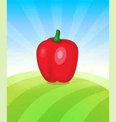 banner template with pepper - vegetables trade vector image