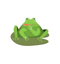cartoon cute winking green frog character vector image