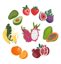cute flat set of the whole and sliced fresh vector image