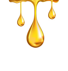 golden shiny drops on white vector image