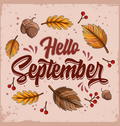 hello september with falling leaves and nuts vector image
