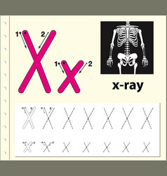 Letter x tracing alphabet worksheets vector
