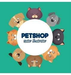 pet shop poster with lovely cats and green vector image