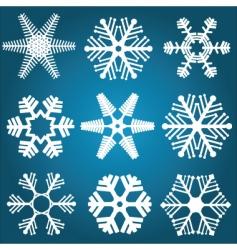 snowflake designs vector image