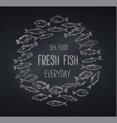 banners hand drawn fish blackboard vector image