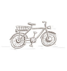 bicycle hand drawn sketch vector image