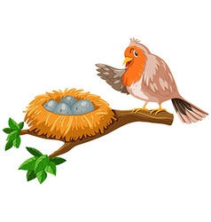 Bird and the eggs in the nest vector image