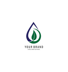 drop water and leaf logo vector image