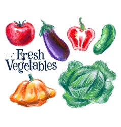 fresh vegetables logo design template vector image